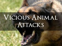 Vicious-Dog-Attacks
